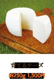 育てるチーズ
